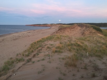 Moon rising over a sandy beach backed by dunes