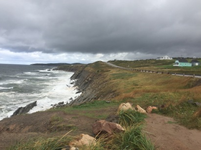 Scenic road along the seashore